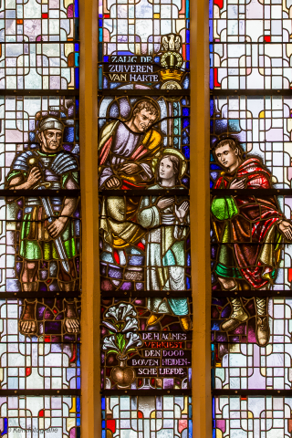 Sint Martinuskerk Roodhuis - Kerkfotografie (14)